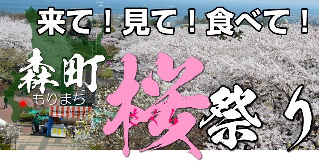 北海道 森町(もりまち)桜祭り