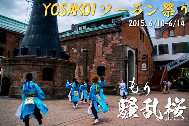 ヨサコイソーラン祭り2015 もり騒乱桜