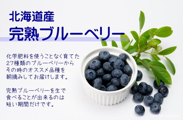 北海道産完熟ブルーベリー 新鮮産直ネット