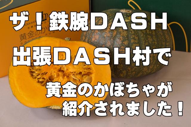 ザ!鉄腕DASH 出張DASH村