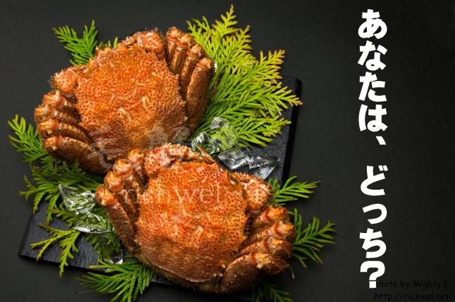毛蟹 毛がに 食べ方 新鮮産直ネット