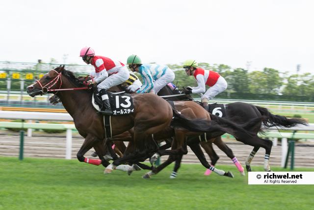 JRA函館競馬場で競走馬の撮影